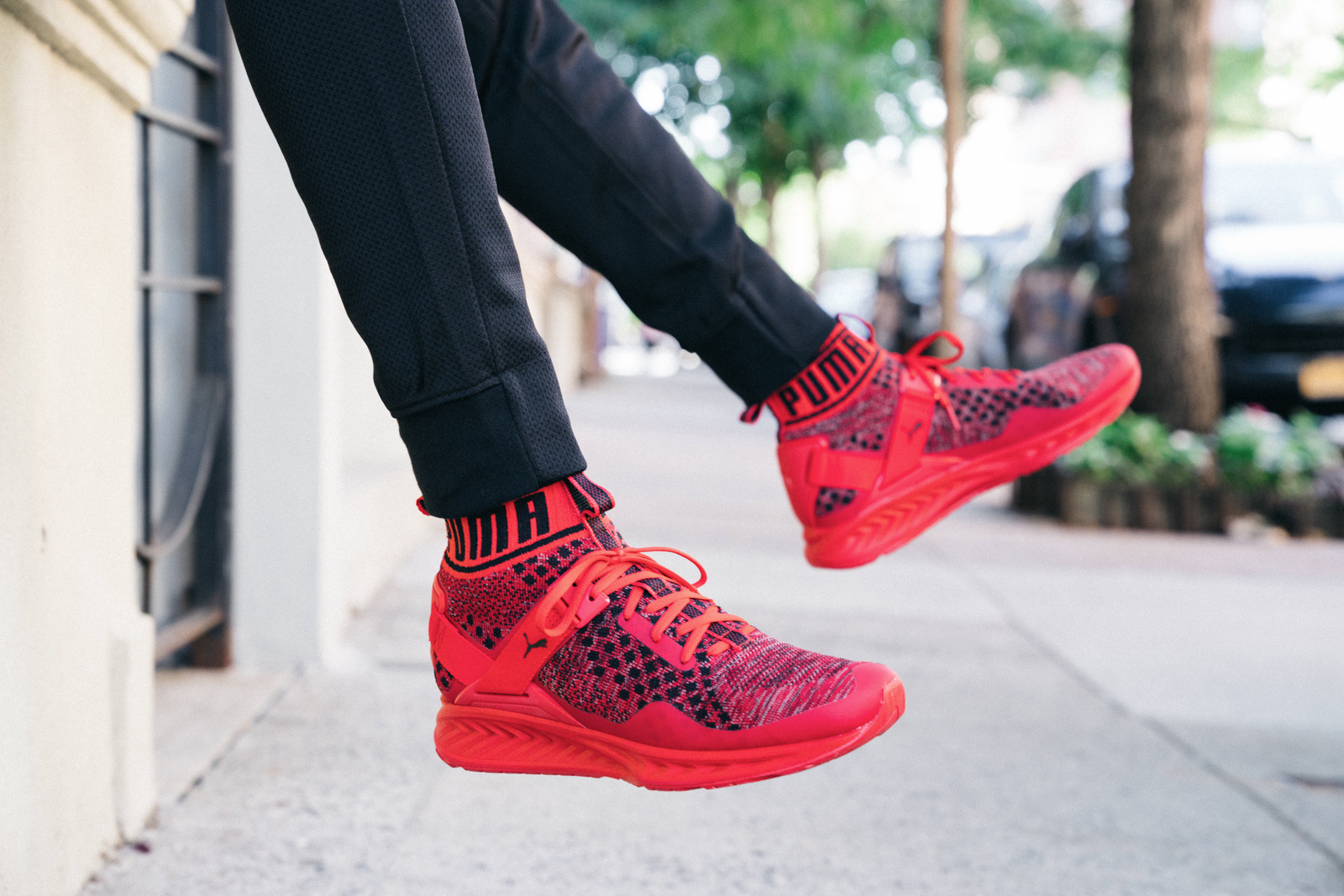puma ignite evoknit colorways